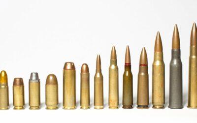 Novela zákona o zbraních a střelivu Zákon č.13/2021Sb